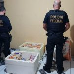 """PF realiza a operação """"Bravo Uniform"""" em combate a corrupção eleitoral em Morros"""