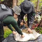 Funai e Polícia Militar combatem ilícitos ambientais em Terras Indígenas do Maranhão