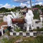 Maranhão ultrapassa 7 mil mortes pelo Covid-19